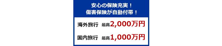 lifecard_ryokoushougai_1