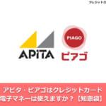 アピタ・ピアゴはクレジットカード・電子マネーは使えますか?【知恵袋】