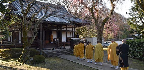 朝の観桜会