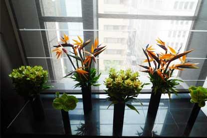 月1回交換される花