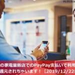 全国の家電量販店でのPayPay支払いで利用額の10%が還元されちゃいます!【2019/12/22日まで】
