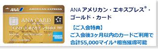 ANAアメックスゴールド 公式サイト